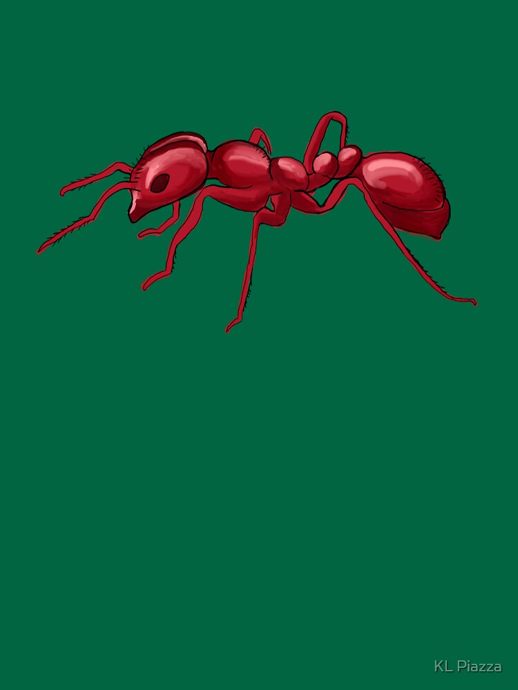 God made an Ant by DOODL