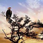 Eagle in Alaska by Nancy Richard