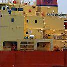 Cape Dawson Closeup 061718 by marybedy