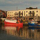 Balbriggan Harbour  by Martina Fagan