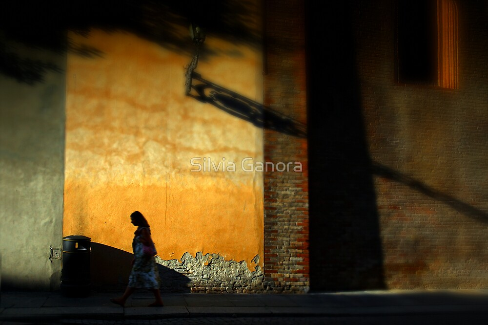 Shadows all around you by Silvia Ganora