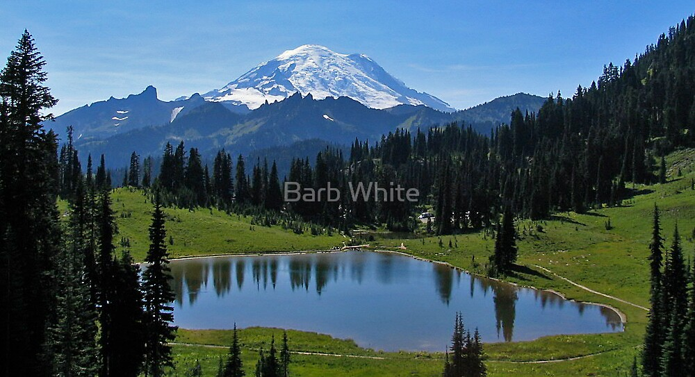 """Tipsoo Lake in Mt. Rainier National Park"" by Barb White ..."