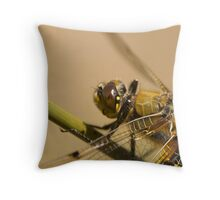 Four spotted chaser Throw Pillow
