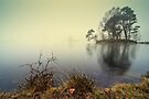 Tarn Howes - Cumbria by David Lewins
