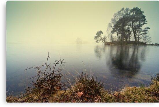 Tarn Howes - Cumbria by David Lewins