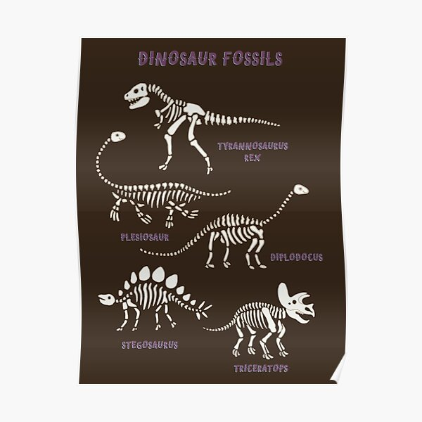 Dinosaur Fossils - cream on brown - Fun graphic pattern by Cecca Designs Poster