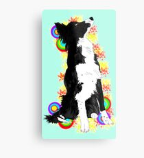Border Color Metal Print