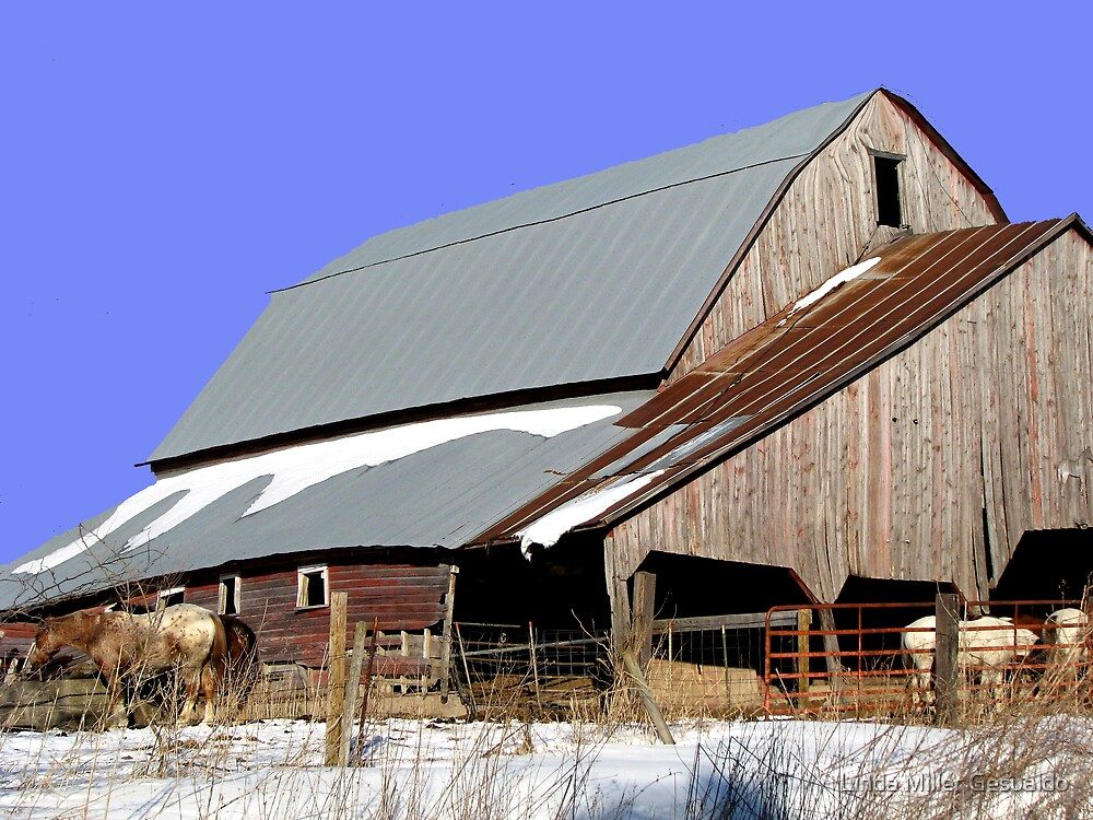 Quot Old Barn With A Metal Roof Quot By Linda Miller Gesualdo