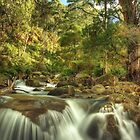 Eurobin Creek, Mount Buffalo by Kevin McGennan
