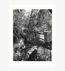 Dallas Arboretum Bridge Art Print