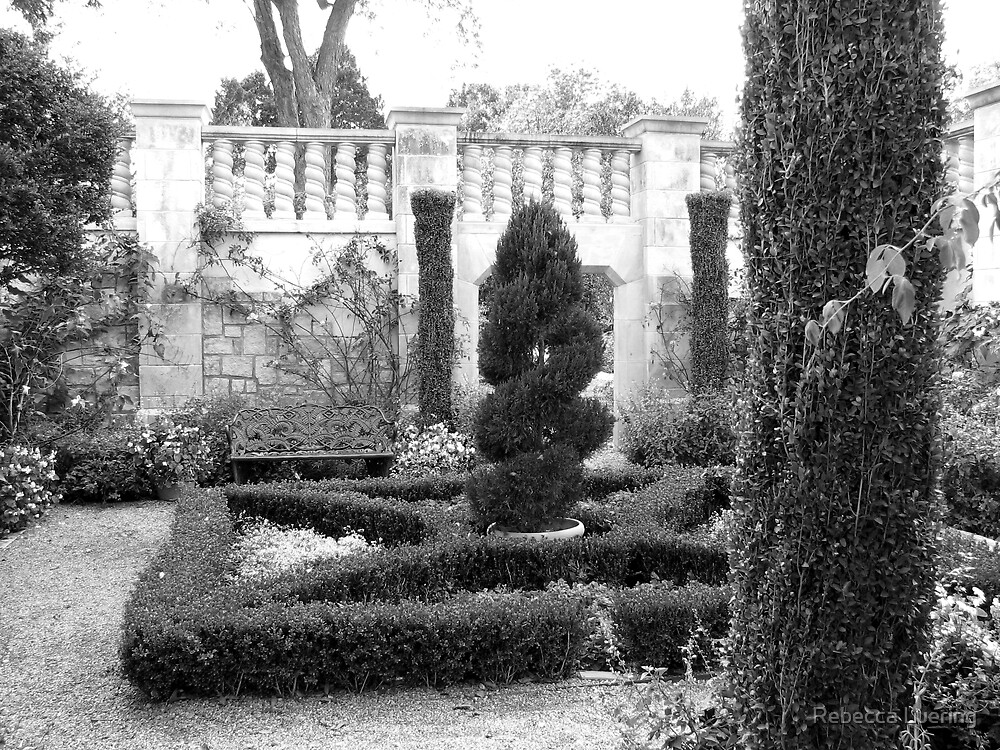 Dallas Arboretum Topiary by Rebecca Luering