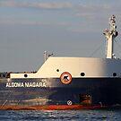 Algoma Niagara Detail 051618 by marybedy