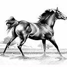 Spring Fever Stallion by Patricia Howitt