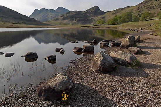 Langdale Pikes and Blea Tarn by derekbeattie