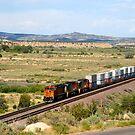 Continental Railroad by David Lee Thompson