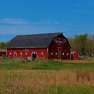Stewarts Barn by Larry Trupp