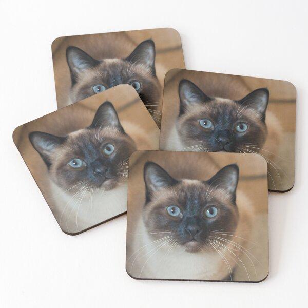 Tazoo Coasters (Set of 4)