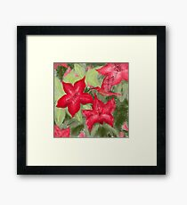 Red flowers and hummingbird print  Framed Print