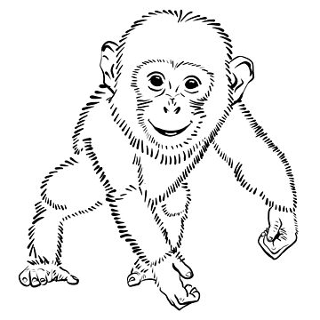 Chimpin by DroopyFruit