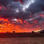 Stirling Ranges Sunrise by robcaddy