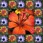 Floral Collage featuring Orange Lily by SunriseRose