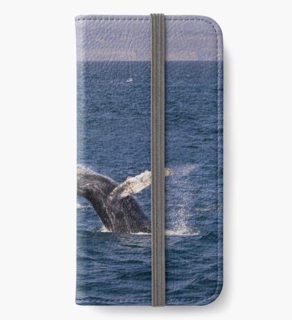 Durchbrechen des Buckelwals iPhone Flip-Case