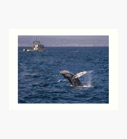 Durchbrechen des Buckelwals Kunstdruck