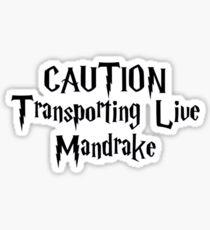 Caution Transporting Live Mandrake Sticker