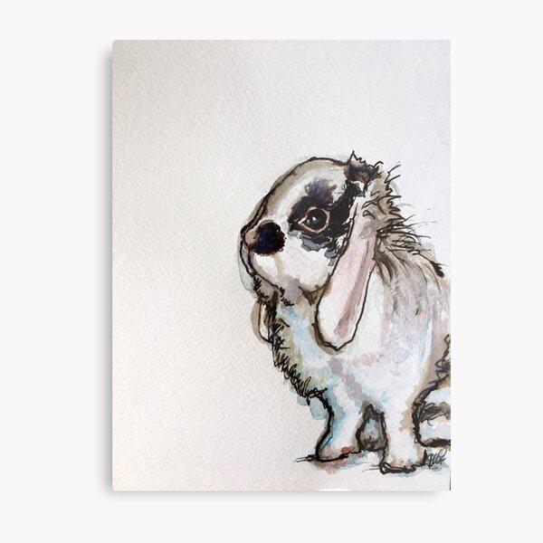 Mini Lop Rabbit Wall Art Redbubble