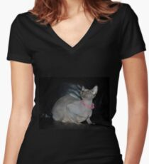 Sphynx cat also known as Canadian Hairless  Women's Fitted V-Neck T-Shirt