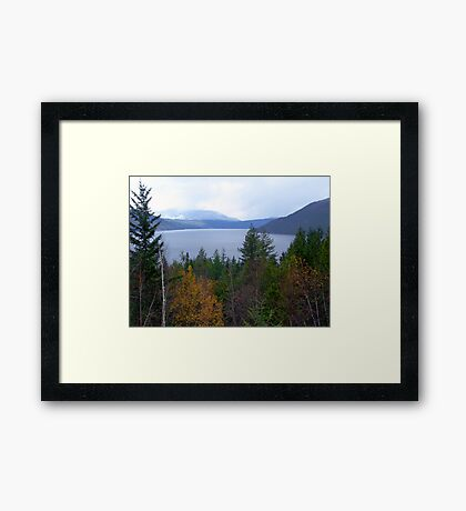 Near Salmon Arm Framed Print