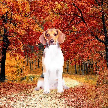 Beagle Dog Sitting Fall Season, Trees by aashiarsh