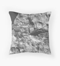 Brachiopod fossils from Usk, Monmouthshire Throw Pillow