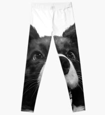 Who's a good boy? Leggings