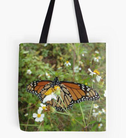 Monarch on Bidens alba Tote Bag