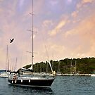 Hvar, Croatia by Nancy Richard