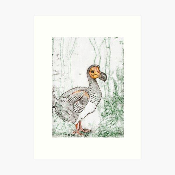 Dodo Kunstdruck