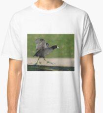Coot Dance Classic T-Shirt