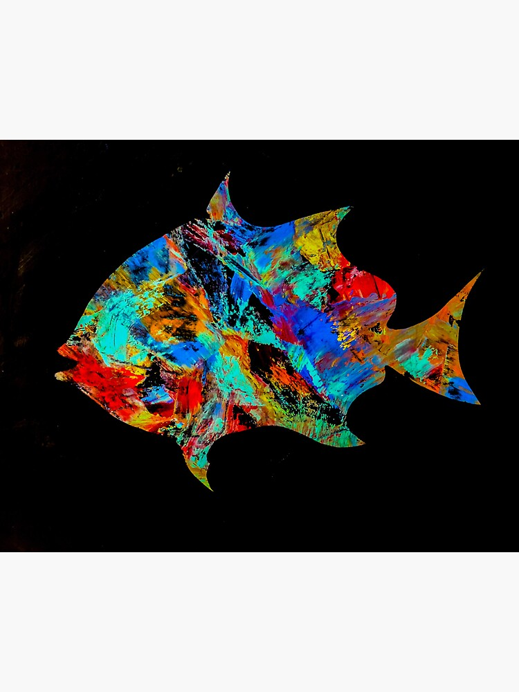 The Ugly Spadefish  by barryknauff