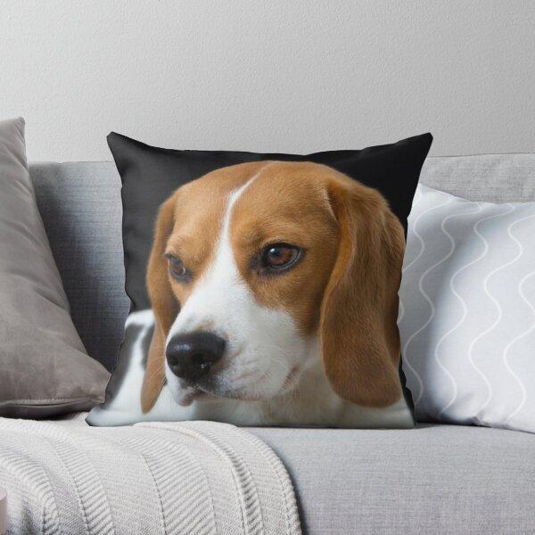 Beagle on the Black Throw Pillow