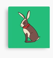 Peppy Hare Canvas Print