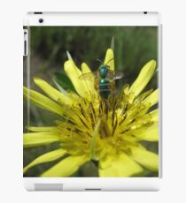 Green Bug on Yellow Flower iPad Case/Skin
