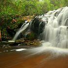 Beehive  Creek Falls, Coopracambra NP by Kevin McGennan
