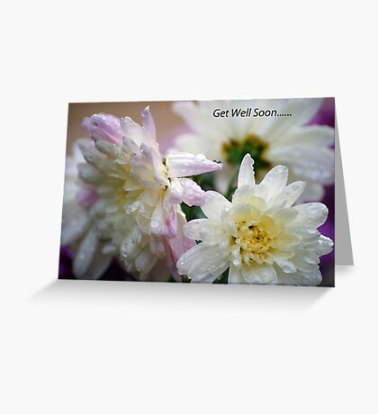 Get Well Soon flowers.. Greeting Card