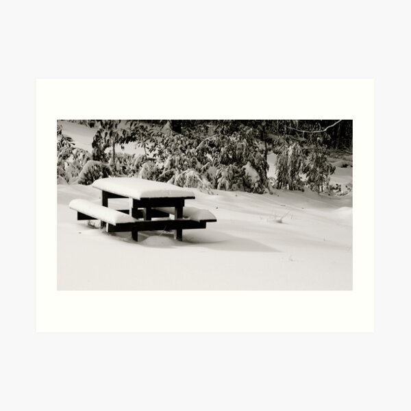 Bench Marked Art Print