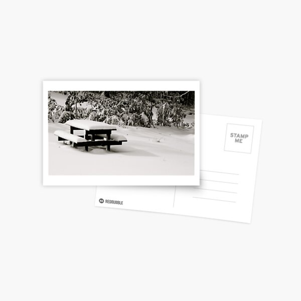 Bench Marked Postcard