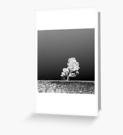 View from the 'Other' side Greeting Card
