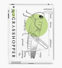 Fig. 2 Anatomy of a Grasshopper iPad Case/Skin