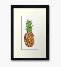 Sweet Pineapple Fruit Fun Framed Print