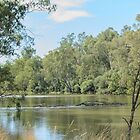 Along the Murray by Vickie Burt